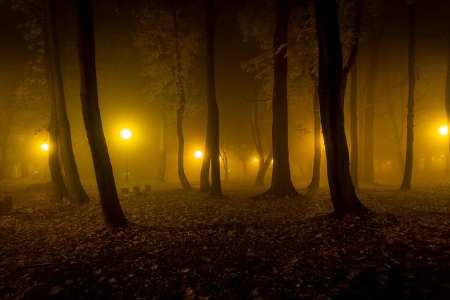 暗い場所で迷子になる