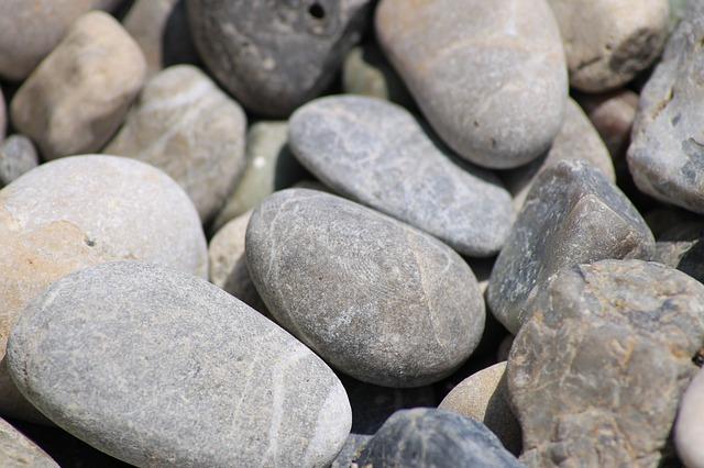 石や骨などを食べる